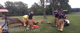 Tree fire at Bridge's Golf Course (Adams County)